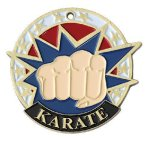 USA Sport Karate Medals All Trophy Awards