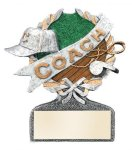 Coach Multi Color Sport Resin Figure Multi Color Sport Resin Trophy Awards