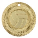 Vortex Volleyball Medal Volleyball Trophy Awards